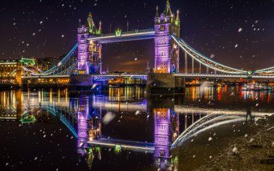 See The Christmas Lights